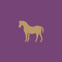競走馬や乗馬の調教 title=競走馬や乗馬の調教